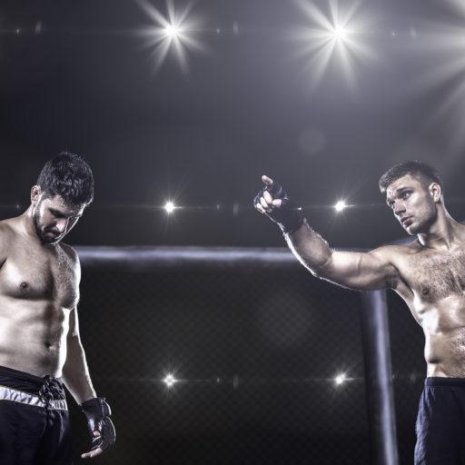 Combat & Counterterrorism Fighter Krav Maga MMA Berlin
