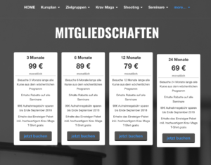 streetwise academy website franchise franchising sport studio berlin success krav maga shooting